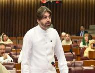 NA membership of elements spreading chaos be canceled: Minister