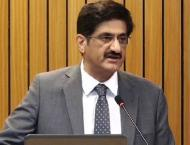 Sindh Chief Minister authorises SRB to collect Electricity Duty f ..