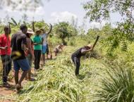 W.African farm 'bootcamp' gets green entrepreneurs into shape