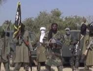 Over 30 People Killed by Boko Haram Militants in Cameroon - Repor ..