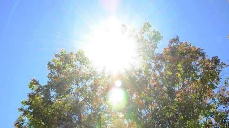 Hot, dry weather to grip most parts, rain at isolated places 11 June 2019