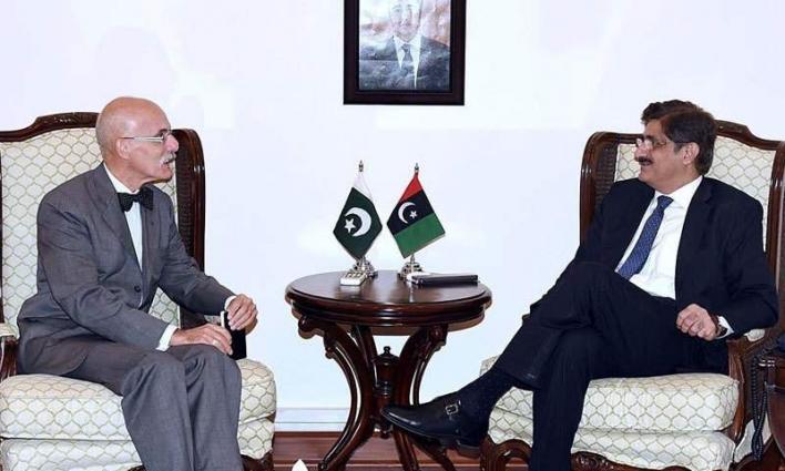 سفیر الاتحاد الأوروبي یلتقي رئیس وزراء حکومة اقلیم سندہ سید مراد علی شاہ