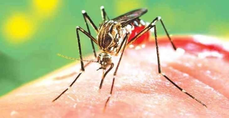RWMC starts anti dengue campaign