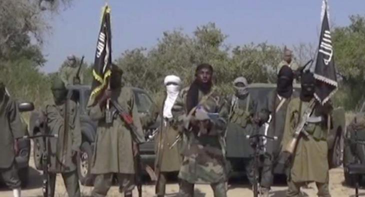 Over 30 People Killed by Boko Haram Militants in Cameroon - Reports