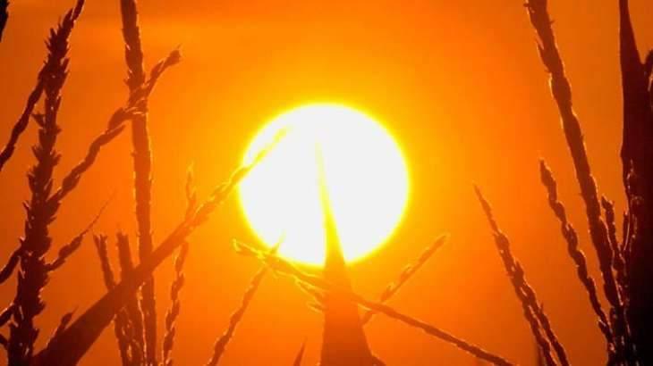 Heatwave persists in northern Sindh