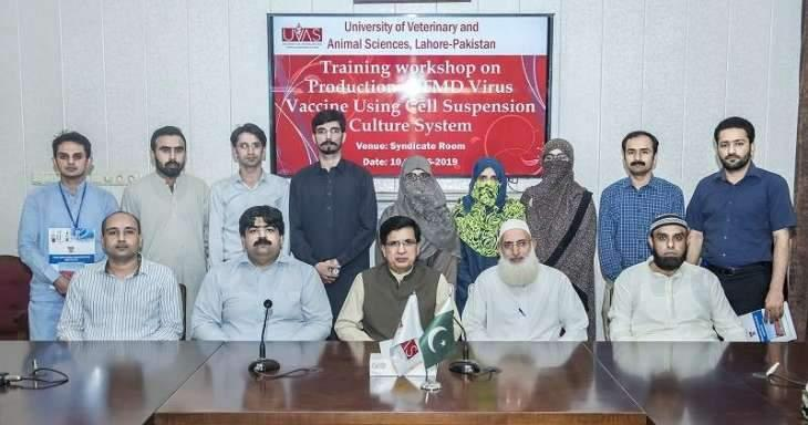 UVAS holds workshop on 'Production of FMD virus vaccine'
