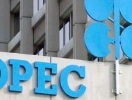 OPEC Reduces Oil Production to 29.9Mln Bpd in June - Internationa ..