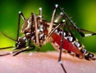Dengue surveillance meeting in Multan
