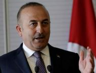 Turkish Foreign Minister, Iraqi Kurdistan's Leadership Discuss Mu ..