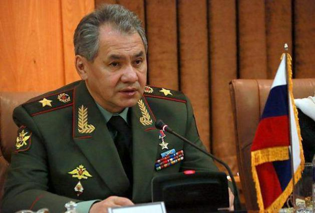Russia's Shoigu Arrives in Severomorsk for Talks With Submersible Fire Incident Commission