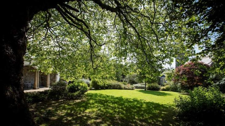 'Simply seeing green spaces' may help reduce cravings