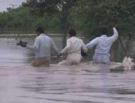 Heavy rains in KP render dead, injured amid livestock perished: N ..