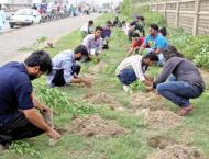 Preparations afoot for tree plantation in Multan