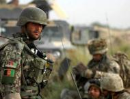 Taliban Commander Among Fighters Killed in Operation in Afghanist ..