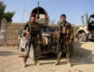 At Least 15 Taliban Militants Killed in Airstrike in Northern Afg ..