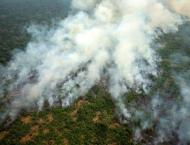Macron Wants to Help Brazil Put Out Fires, But May Need to Learn  ..