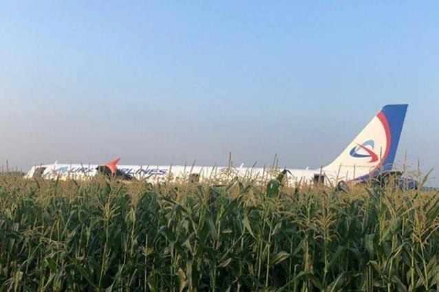 Russian Airbus makes emergency landing in corn field