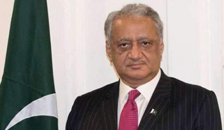 Pakistani Ambassador in Russia Confirms UNSC to Hold Meeting on Jammu and Kashmir Friday
