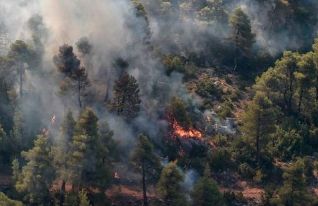 Greek fire crews make progress on island blaze