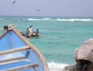 Yemen Accuses UAE of Attacking Energy Company on Socotra Islands  ..