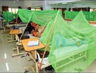 12 more fall prey to Dengue