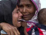 Rohingya still in Myanmar face 'threat of genocide',  investigato ..