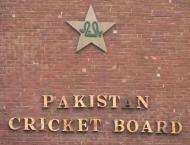 PCB awards two-month contracts to regional curators and groundsme ..