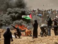 Arab Countries Will Continue to Jointly Solve Palestinian Problem ..