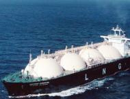 Energy Ministry contradicts news about LNG terminals