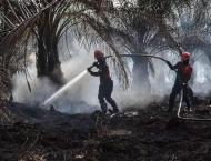 Burning issue: Indonesia fires put palm oil under scrutiny