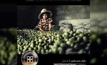 جائزة حمدان بن محمد للتصوير تنشر الصور ..
