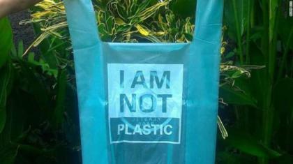 Pakistani scientist claims to generate bio-plastic with mango kernel