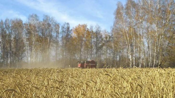 Damage Russian Farmers Face Over Emergency Situations to Reach $142.3Mln in 2019- Official
