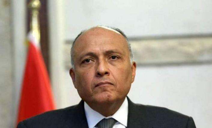 Egyptian, UAE Top Diplomats Exchange Views on Regional Issues Ahead of LAS Session - Cairo