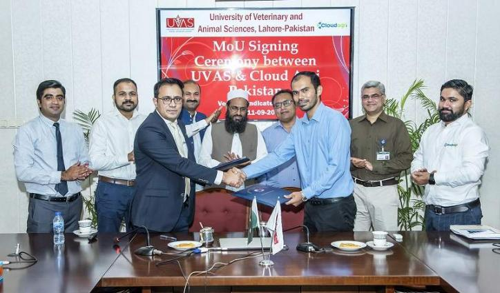 UVAS inkMoU with Cloud Agri Pakistan to collaborate on research in dairy animal monitoring through sensor technologies