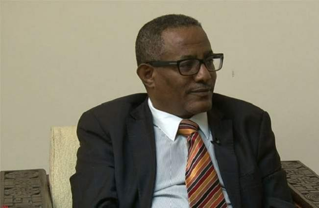 Ethiopian Foreign Minister Discussed Russia's Engagement in Ethiopian Railway Construction
