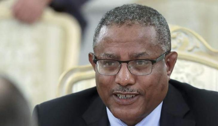 Ethiopia Hopes to Boost Trade Relations with Russia - Foreign Minister