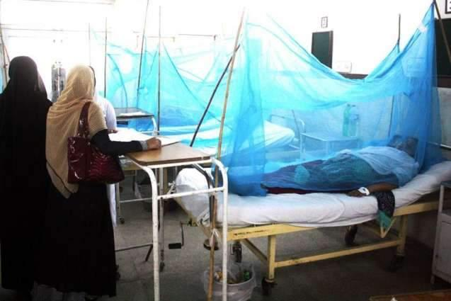 Seven dengue patients under treatment in Allied Hospital Faisalabad