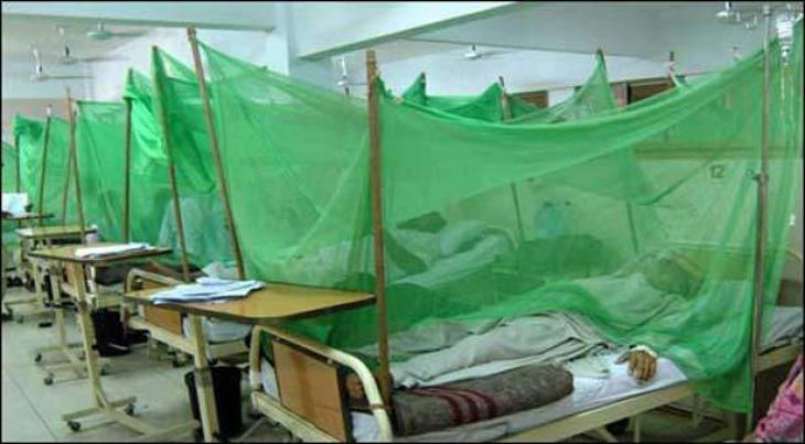 Dengue confirmed among 7 patients