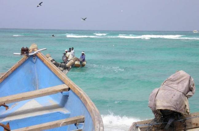 Yemen Accuses UAE of Attacking Energy Company on Socotra Islands - Governor
