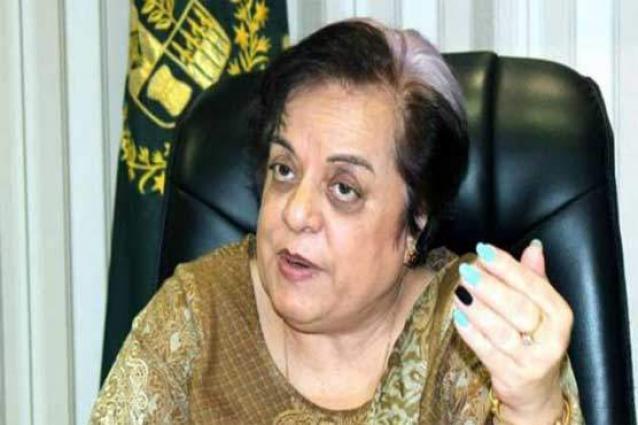 Mazari demands 'Human Corridor' to provide Kashmiris food, medicines