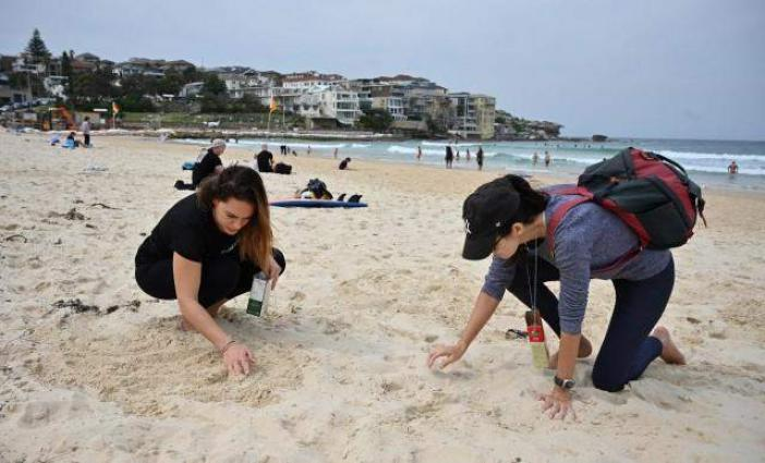 Environmental activists pluck plastic from world's beaches on mass cleanup day