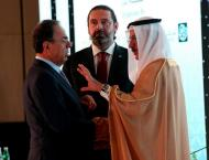 Ties between UAE, Lebanon are historic: Sultan Al Mansouri