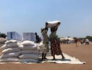 Southern Africa Needs More Aid as Record 45Mln. Face Severe Hunge ..