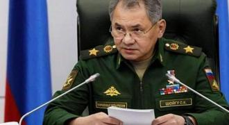 Shoigu, Esper Discuss Situation in Syria in Phone Talks on Tuesday