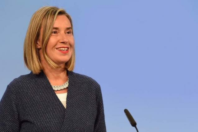EU Calls on Turkey to Cease Military Action in Syria - Mogherini