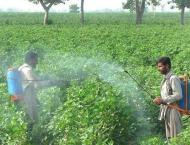 Growers stressed to cultivate mixed crops in Faisalabad