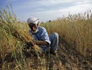 Interest-free loan cheques among 500 farmers distributed