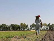 Farmers' platforms to be set up in 30 cities