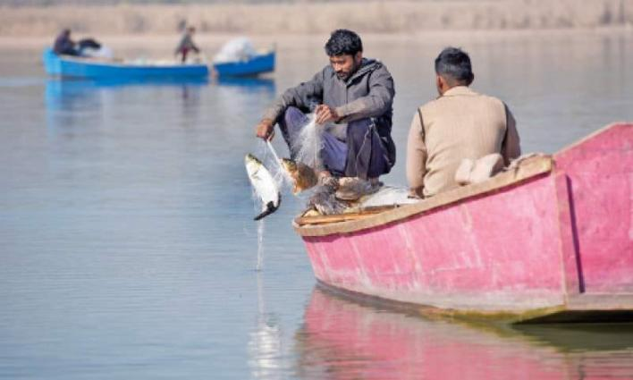 Rawal Dam's commercial fishing rights: Govt suffers around Rs 44mln loss